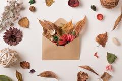与信封的秋天集合有很多叶子 免版税库存图片