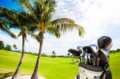 与俱乐部的高尔夫球袋反对绿色路线和棕榈 免版税库存照片