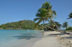 与倾斜的棕榈和蓝色小船的加勒比海滩 免版税库存图片