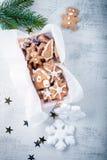 与假日装饰的圣诞节姜饼 库存照片