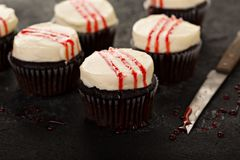 与假血液的鬼的万圣夜主题的杯形蛋糕 免版税图库摄影