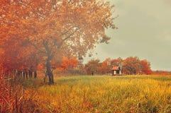与偏僻的被放弃的房子的秋天神奇风景 免版税库存照片