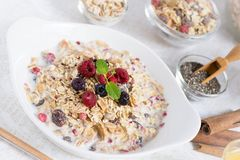 与健康早餐Muesli的晴朗的早晨用牛奶、Chia种子、莓果和桂香 库存照片
