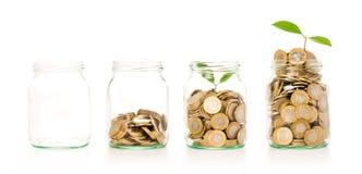 与储蓄硬币的金钱生长植物步在银行概念 免版税库存照片