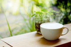 与充分的白色泡沫的热的拿铁咖啡与在木桌上的杯子有绿色热带区域庭院背景 库存图片