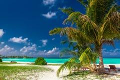 与充满活力的盐水湖的自然松弛的热带海滩在马尔代夫 免版税库存照片