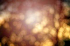 与充满活力的金黄,橙色颜色和bokeh的秋天视图 免版税图库摄影