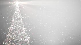与光亮的光的圣诞树 影视素材