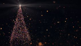 与光亮的光的圣诞树 股票视频