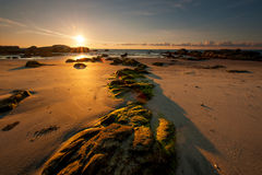 与光亮的太阳的美丽的海滩 库存图片