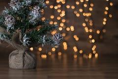 与光和木背景的微型圣诞树 免版税库存照片