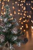 与光和木背景的微型圣诞树 免版税库存图片