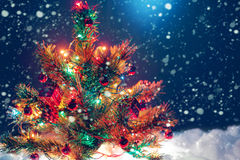 与光和装饰诗歌选的圣诞树  图库摄影