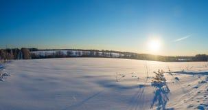 与光束的冬天pano,森林 免版税库存照片