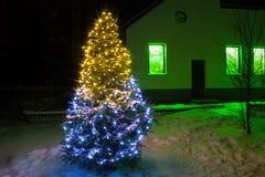 与光的圣诞树夜 免版税图库摄影