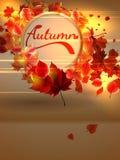 与光的秋天背景 正EPS10 免版税图库摄影