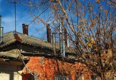 与光秃的分支的树在一个老历史房子的背景有红色墙壁和很多烟囱的在屋顶 免版税库存图片