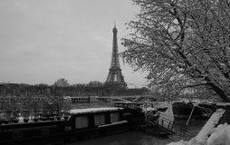 与光秃的树在冬天,巴黎,法国的黑白埃佛尔铁塔 免版税图库摄影