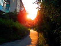 与光芒的金黄日落在胡同 库存图片