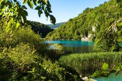 与克罗地亚的看法湖Plitvice国家公园的美丽的明信片 绿色绿松石自然本底 免版税库存照片