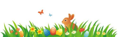与兔宝宝的复活节草 库存照片