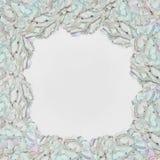 与八仙花属的精美花卉框架在一白色backgrou开花 免版税库存图片