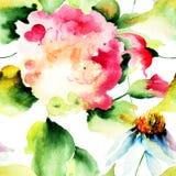 与八仙花属和春黄菊花的无缝的样式 库存照片
