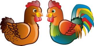 与公鸡的鸡 图库摄影