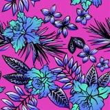 与兰花和羽毛的无缝的花卉热带样式 库存图片