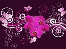与兰花和蝴蝶的紫色构成 免版税库存图片
