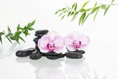 与兰花植物兰花、禅宗石头和竹子叶子的温泉概念 免版税库存照片