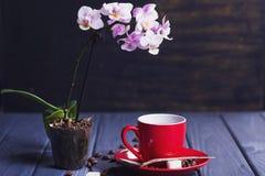 与兰花的咖啡 免版税库存照片