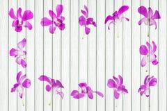 与兰花装饰的白色木背景 免版税图库摄影