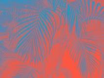 与关闭花,2019年的颜色的居住的珊瑚颜色背景 皇族释放例证