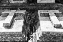 与具体十字架的两个坟墓在坟墓每年祝福在叻丕府,泰国的 库存照片