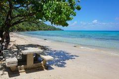 与具体野餐桌的热带海滩在沙子 库存照片