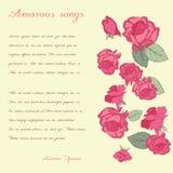 与典雅的字法的时髦的卡片 玫瑰 多彩多姿 库存照片