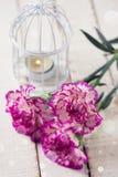 与典雅的康乃馨花的明信片 库存照片