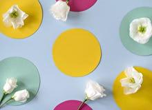 与典雅的花的平的位置概念 免版税图库摄影