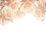 与典雅的花的明信片 免版税库存图片