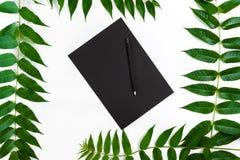 与写生簿的自然在白色桌上的构成和铅笔,装饰用绿色分支 平的位置,顶视图,看法 免版税图库摄影