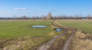 与农业领域和乡下公路的风景 图库摄影
