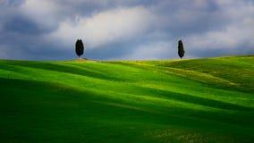 与农夫房子的托斯卡纳著名柏树一朵晴天和白色云彩 免版税库存照片