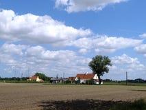 与农村房子和树的富兰德领域 免版税库存照片