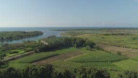 与农田,海,天空的热带风景 影视素材