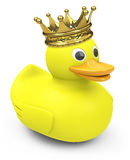 与冠的一只鸭子 库存照片