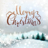 与冬天多雪的风景和冷杉木的圣诞节背景 假日字法 皇族释放例证