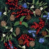 与冬天季节性植物的典雅的无缝的样式、针叶树分支和锥体、莓果和叶子在黑色 皇族释放例证