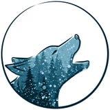 与冬天森林的狼 免版税库存图片