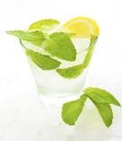 与冰和薄菏的饮料 库存图片